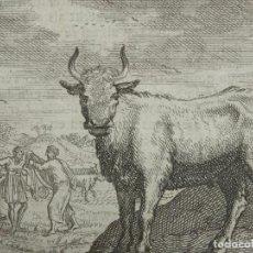 Arte: EMBLEMA ALEGÓRICO: BUEY Y HOMBRES CON ARADOS, 1730. HENDRIK GRAAUWHART /C.H.. Lote 295519853