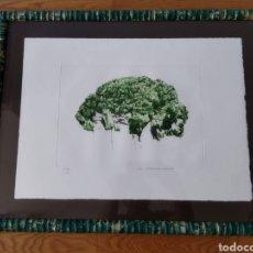 Arte: GRABADO DE JOSÉ MARÍA MEZQUITA GULLON , NUMERADO , VER DESCRIPCIÓN. Lote 296835073
