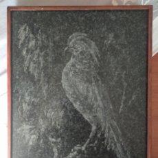 Arte: GRABADO( BUSCADO R. PASSANI ), AVE EN MÁRMOL, AÑO 1975. MÁS ARTÍCULOS ANTIGUOS EN MÍ PERFIL.. Lote 172629587