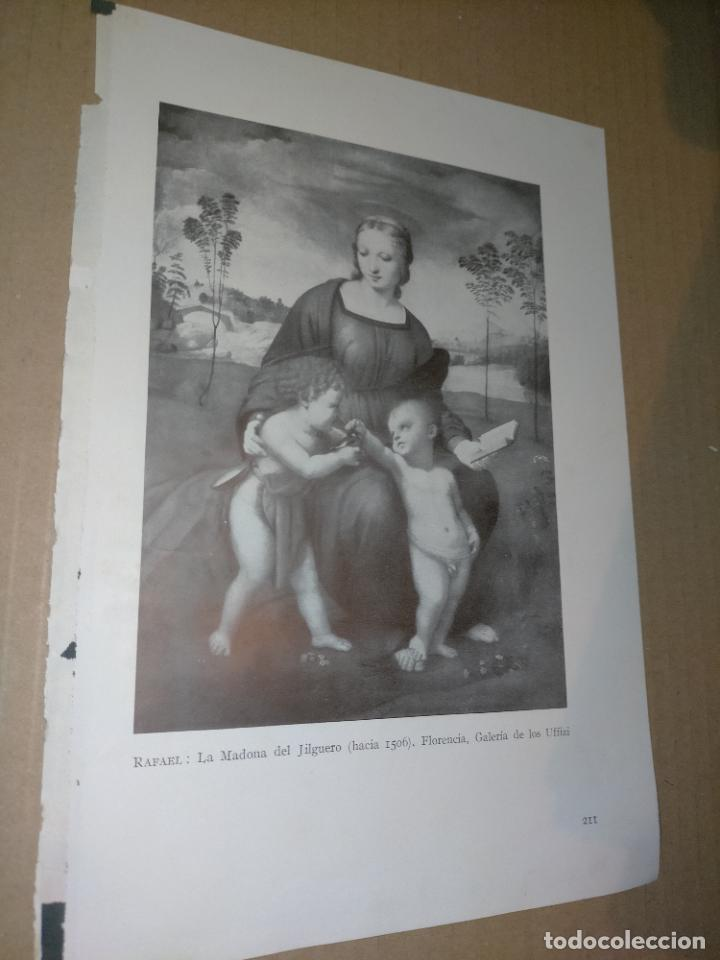 LAMINA HOJA HUECOGRABADO - RELIGIOSO , MADONA LA VIRGEN DEL JILGUERO (Arte - Huecograbado)
