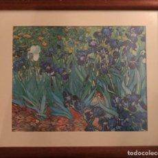 Arte: LIRIOS DE VINCENT VAN GOGH, 52 X45, ENMARCADO. Lote 240273130