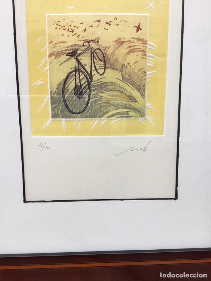 Arte: Cuadro de bici - Foto 2 - 240903680