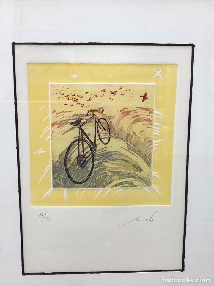Arte: Cuadro de bici - Foto 3 - 240903680