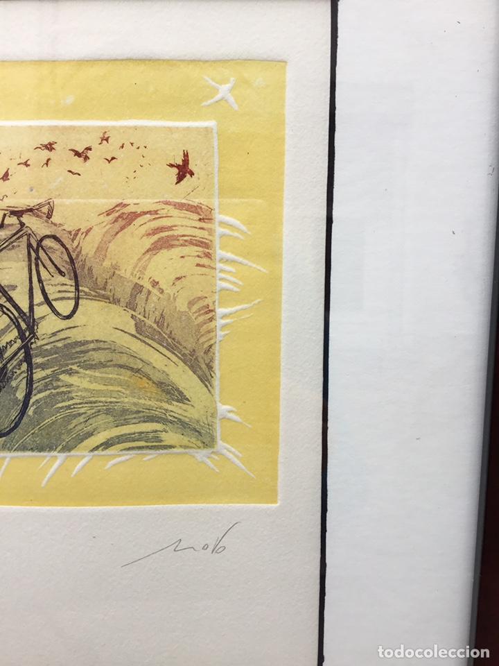 Arte: Cuadro de bici - Foto 4 - 240903680