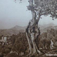 Arte: DEYA MALLORCA PAISAJE ANTIGUO HUECOGRABADO 1928. Lote 275582778