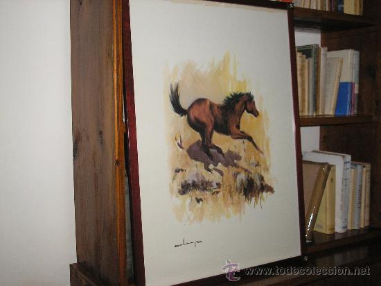 LAMINA ENMARCADA 73 X 53 CM. MOTIVO CABALLOS-2 CON MARCO DE CAOBA (Arte - Láminas Antiguas)
