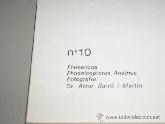 Arte: LAMINA Nº 10 FLAMENCOS - MEDIDAS 25 x 20 cm. - Foto 2 - 26761270