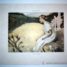 Arte: AMAR AL VUELO - LAMINA (FINALES SIGLO XIX). Lote 17605293
