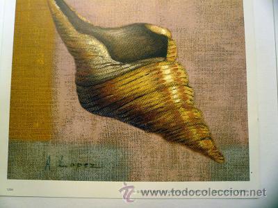 Arte: 2 laminas - Foto 2 - 18968141