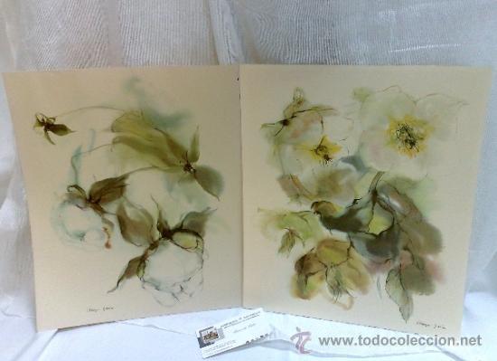 Flores pareja de laminas antiguas para enma comprar - Laminas antiguas para cuadros ...