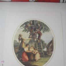 Arte: LAMINA AUGUSTUS, AGOSTO, AUGUST. 30 X 24 CM. Lote 43221232