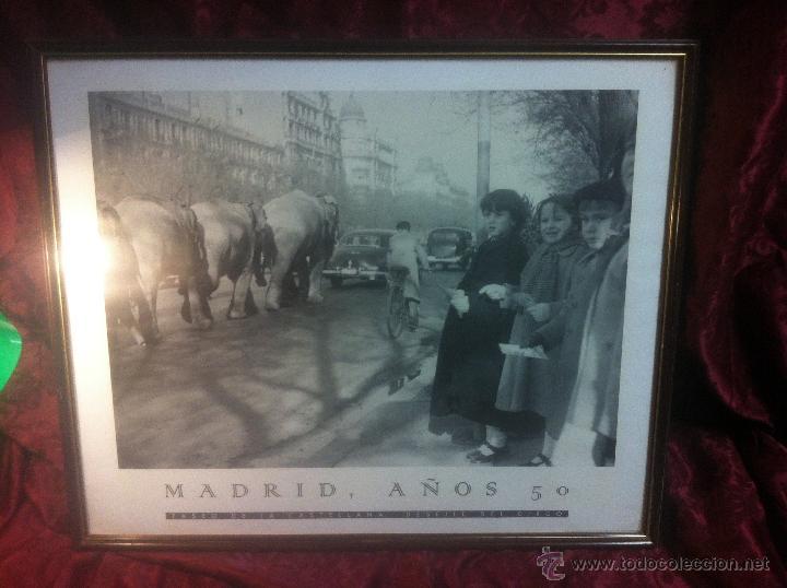 Arte: ANTIGUO POSTER DE DESFILE DE ELEFANTES POR EL PASEO DE LA CASTELLANA - MADRID - NIÑOS CONTEMPLANDOLO - Foto 2 - 44220364
