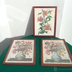 Arte: 3 LAMINAS DE FLORES. Lote 46411711