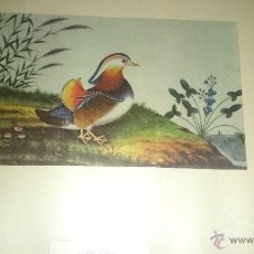 Arte: ARTE CHINO-LAMINA XIX. Lote 47899319