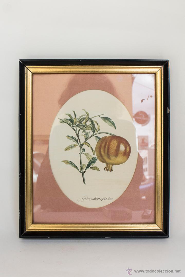 MARCO CON LAMINA ANTIGUA Y PASSPARTOUT DE TELA 30,5 X 25,5 CM (Arte - Láminas Antiguas)