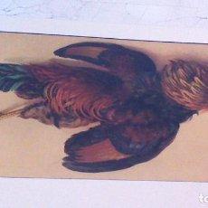 Arte: LAMINA DE COMEDOR. STEHLI FRERES, EDITEURS, ZURICH.. 59 X 29,5 CM.. Lote 62187844