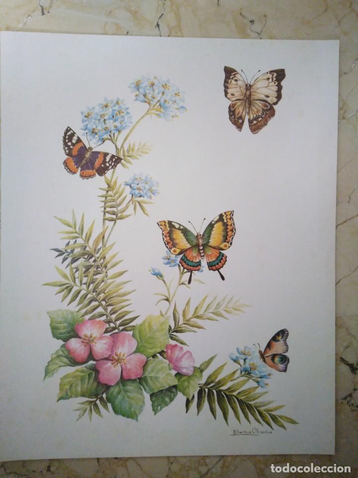 Arte: Lámina numerada. 30 x 24 cm - Foto 2 - 90903245