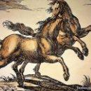Arte: CABALLOS. TRES LAMINAS REPRESENTANDO GRABADOS DEL S. XVII-XVII. ITALIA XX. Lote 108893511