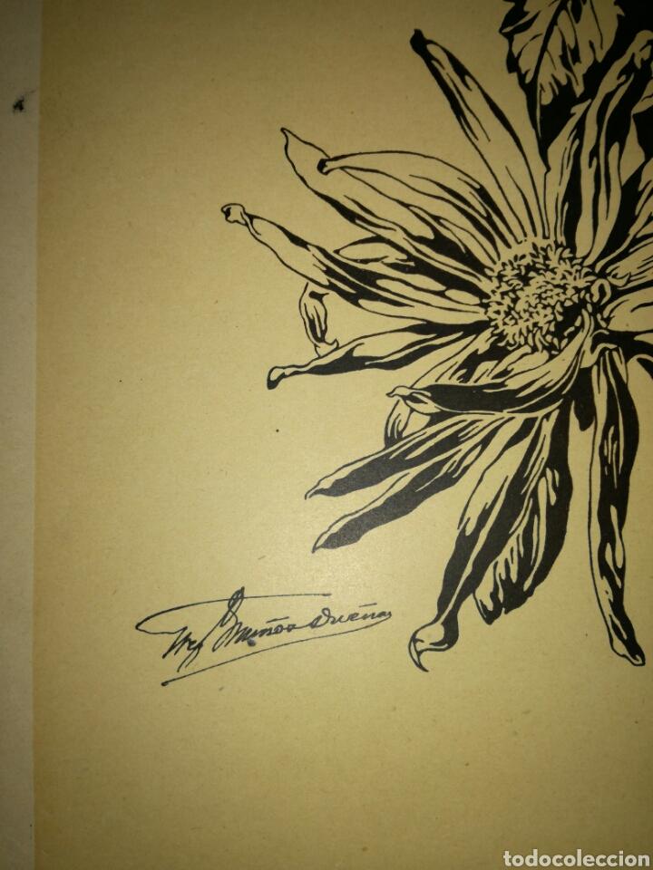 Arte: Antigua lámina de dibujo - Foto 2 - 108929199