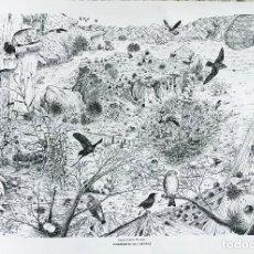 Arte: JOSÉ MANUEL MIRALLES GARCÍA . SUBDESIERTO DE TABERNAS. Lote 112314831