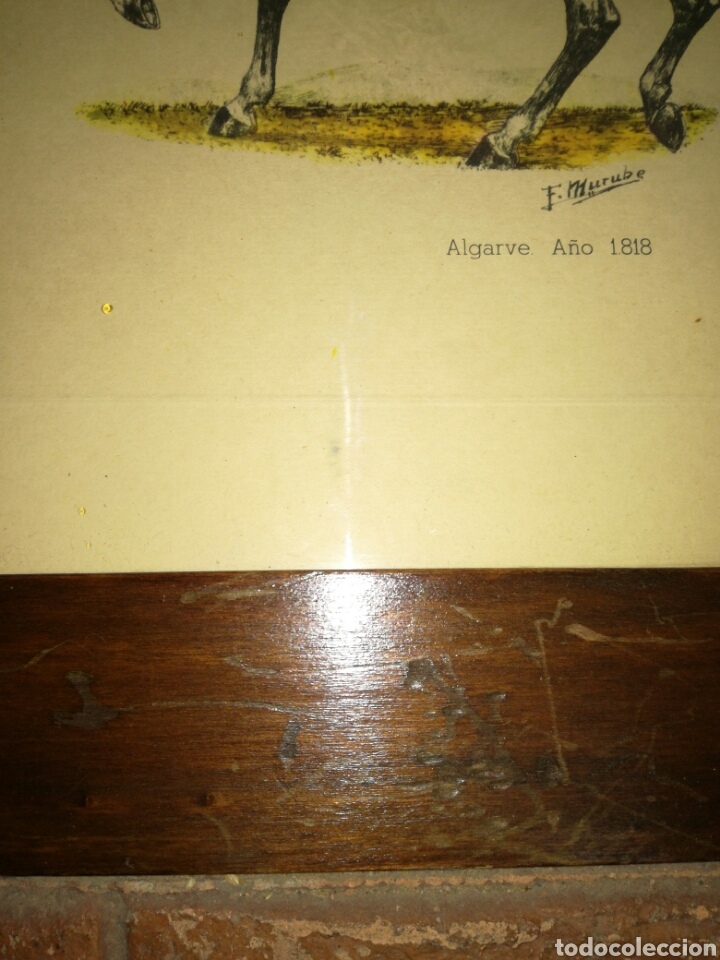 Arte: Pareja de laminas F. Murube enmarcadas - Foto 14 - 115417692