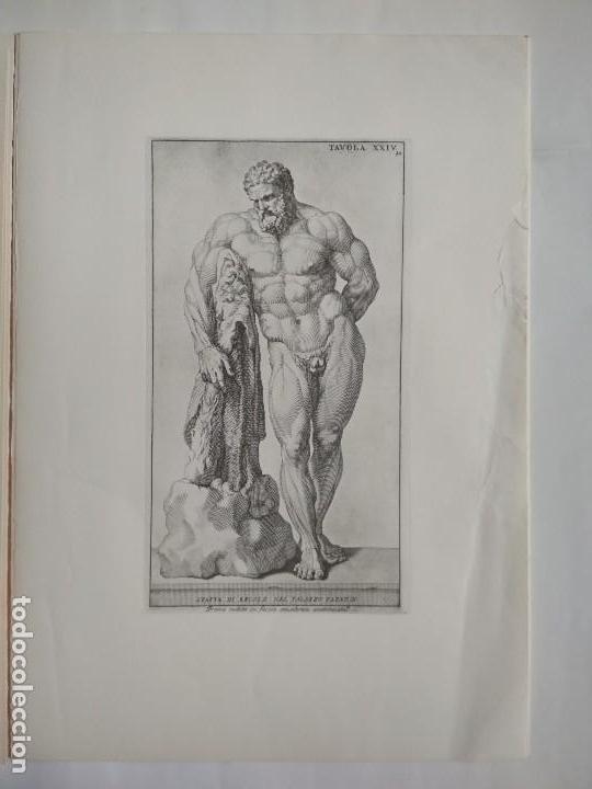 dodici tavole da anatomia. reproduccion grabado - Comprar Láminas ...