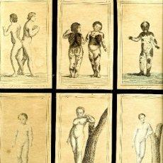 Arte: LÁMINA COMPUESTA POR MOSAICO DE NUEVE FIGURAS HUMANAS SOBRE FISONOMÍA Y RAREZAS. 26 X 39 CM. Lote 140431746