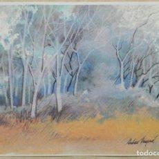 Arte: ANDREU FRESQUET - LAMINA IMPRESA 42 X 30. Lote 140582094