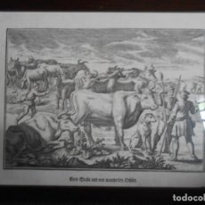 Arte: TRATANTES DE GANADO - LÁMINA ALEMANA -. Lote 140877182