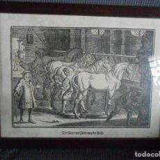 Arte: ANTIGÜA LÁMINA ALEMANA -CABALLERIZA -ESCENA RURAL-. Lote 140877846