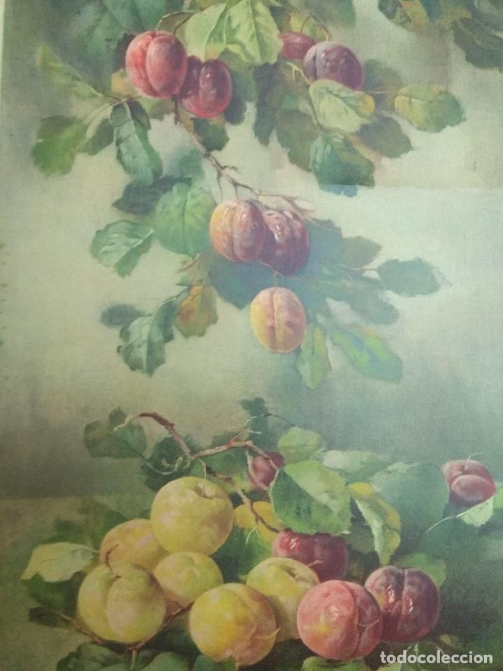 LAMINA PARA ENMARCAR MUY ANTIGUA 60X30 VINTAGE (Arte - Láminas Antiguas)