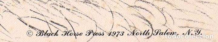 Arte: Lámina de caballos. Horses. Black Horse Press 1973. North Salem. New York. - Foto 3 - 167436220