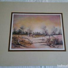 Arte: 26-LAMINA PAISAJE, SERIE TEODORA Nº 14, 1979, 30 X 24 CM. Lote 174439670