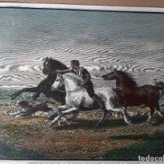 Arte: IMPRESIÓN ANTIGUA DE LA CABALLERIA. AÑO DESCONOCIDO 22X17 CENTÍMETROS. Lote 179223318