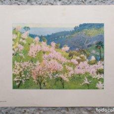 Arte: LAMINA VISTA ALMENDROS EN FLOR (MALLORCA). 21 X 27,5 CM (APROX). Lote 195393183