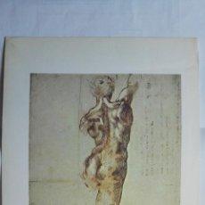 Arte: LAMINA Nº 21, MIGUEL ANGEL, DESNUDO MASCULINO DE ESPALDA, MEDIDAS 34,5 X 23 CM. Lote 263683480
