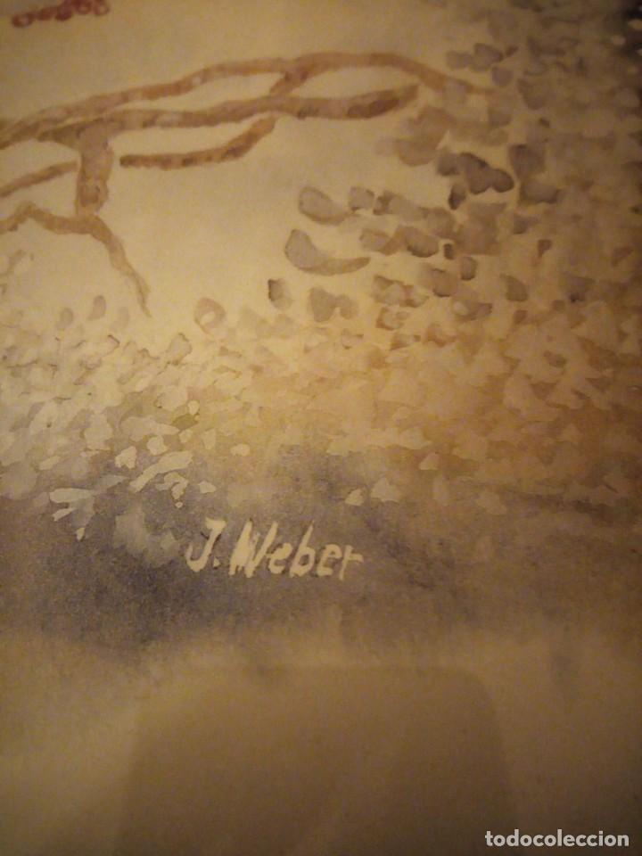 Arte: Lamina imagen de pajaritos,j.weber verdier et mésanges noires,enmarcado. - Foto 4 - 206384415