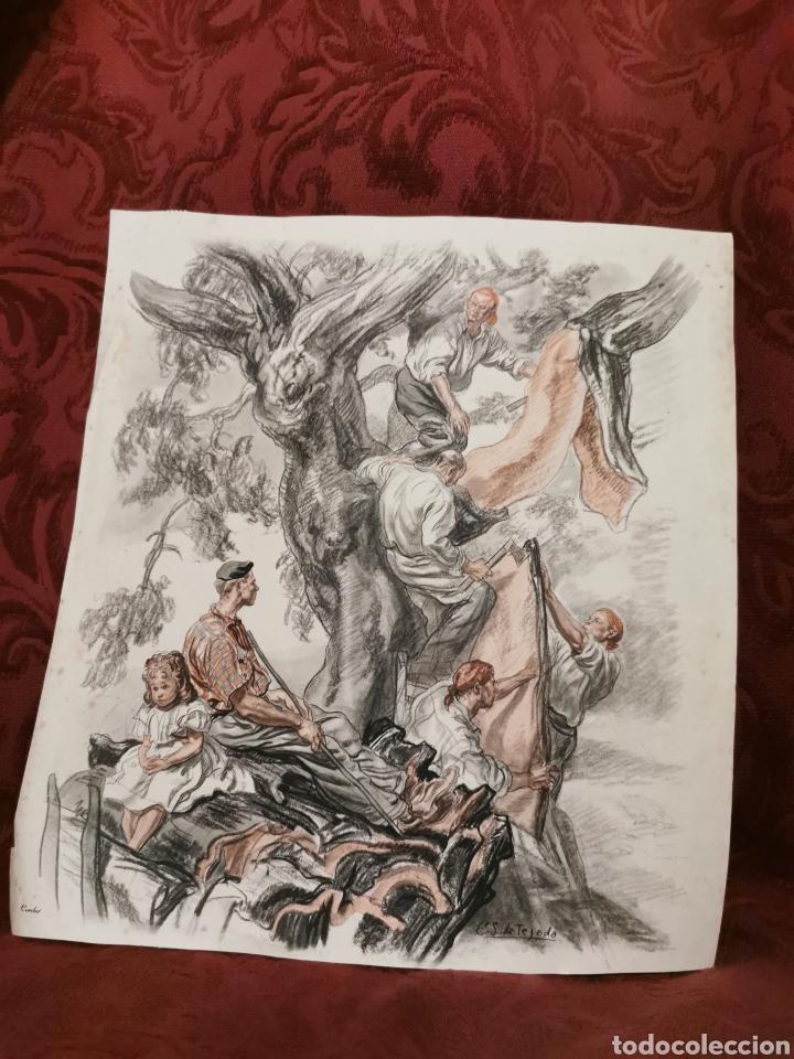 ANTIGUA LÁMINA DE CARLOS SÁENZ DE TEJADA RECOGEDORES DE CORCHO (Arte - Láminas Antiguas)