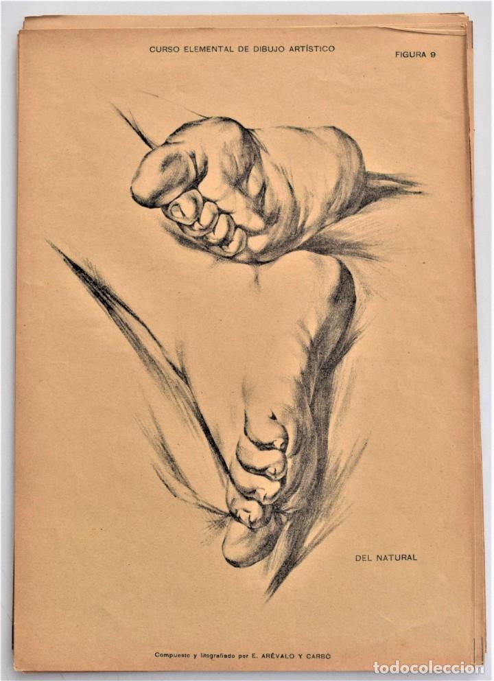 Arte: CURSO ELEMENTAL DE DIBUJO ARTÍSTICO - EDUARDO ARÉVALO Y CARBÓ - 19 LÁMINAS - VALENCIA 1909? - Foto 4 - 214319356
