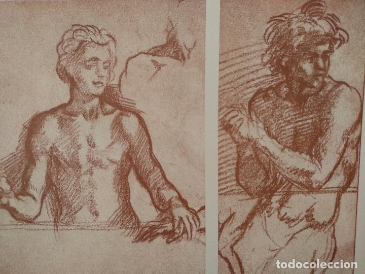 Arte: Estudios de Andrea del Sarto, Meister Albertina, plancha nº 79 - Foto 2 - 237134265