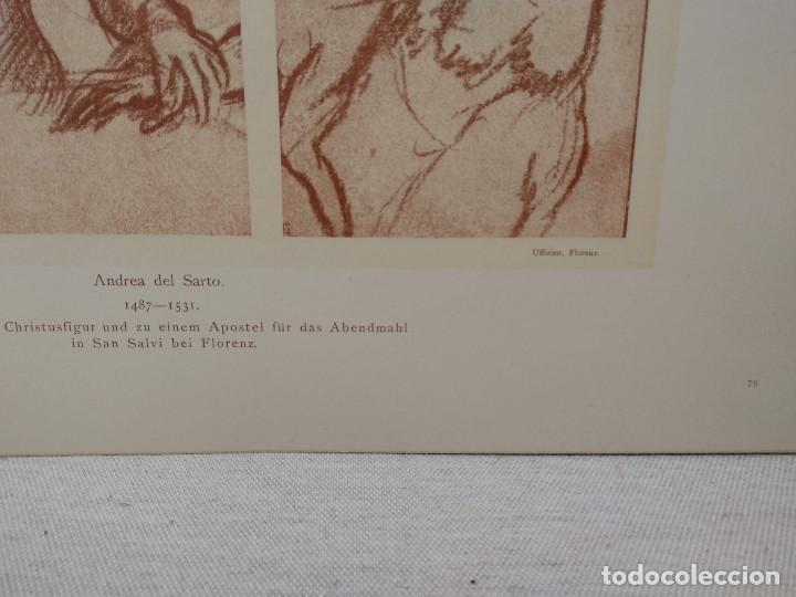 Arte: Estudios de Andrea del Sarto, Meister Albertina, plancha nº 79 - Foto 3 - 237134265