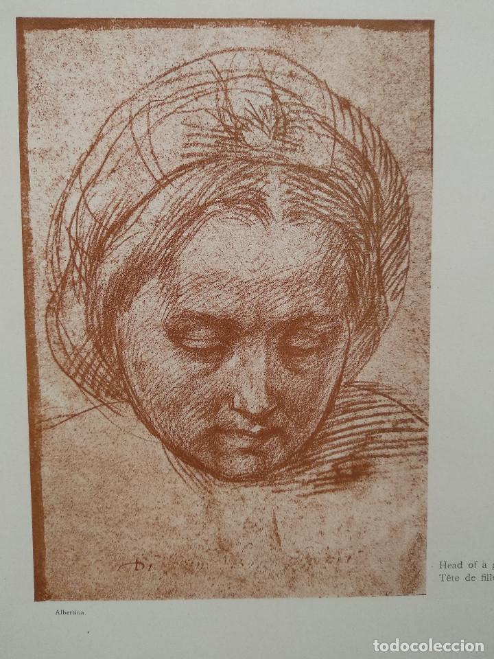 Arte: Estudios de cabeza de Andrea del Sarto, Meister Albertina, plancha nº 562 - Foto 2 - 237134675