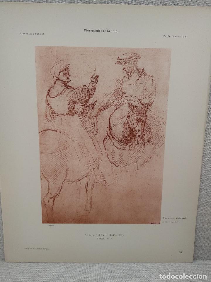 ESTUDIOS DE ANDREA DEL SARTO, MEISTER ALBERTINA, PLANCHA Nº 782 (Arte - Láminas Antiguas)