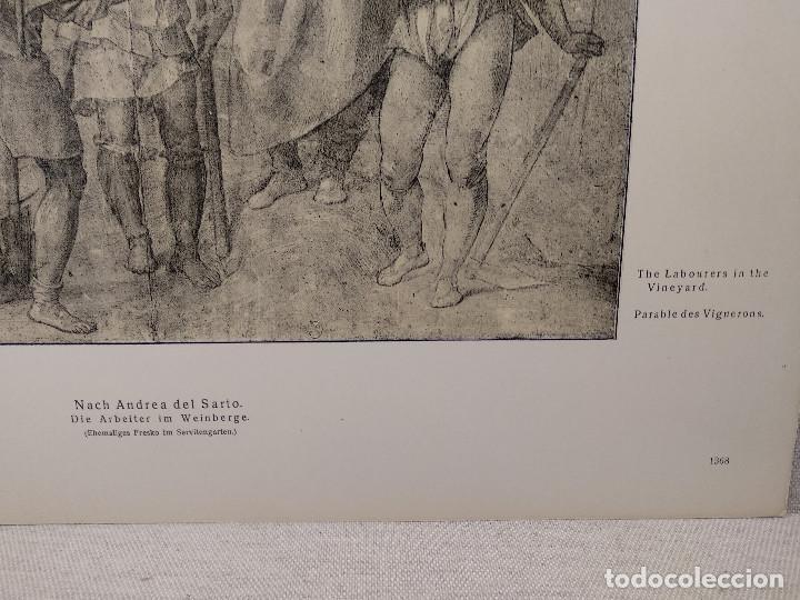 Arte: Parabolas a los viticultores de Andrea del Sarto, Meister Albertina, plancha nº 1368 - Foto 3 - 237151855