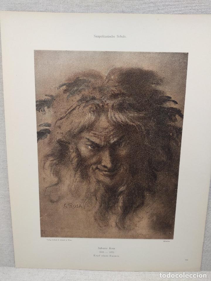 CABEZA DE FAUNO DE SALVATOR ROSA, MEISTER ALBERTINA, PLANCHA Nº 314 (Arte - Láminas Antiguas)