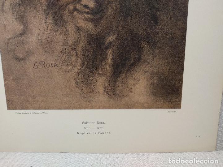 Arte: Cabeza de fauno de Salvator Rosa, Meister Albertina, plancha nº 314 - Foto 3 - 237153205