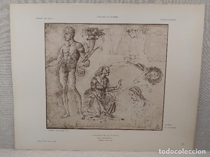 BOCETOS DE LORENZO DI CREDI, MEISTER ALBERTINA, PLANCHA Nº 1095 (Arte - Láminas Antiguas)