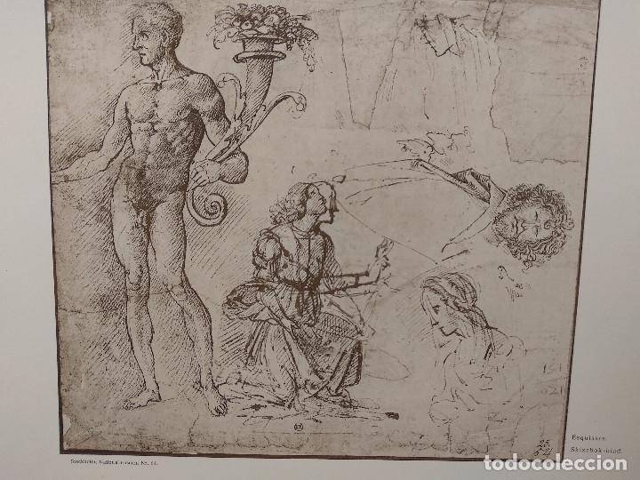 Arte: Bocetos de Lorenzo di Credi, Meister Albertina, plancha nº 1095 - Foto 2 - 237153735