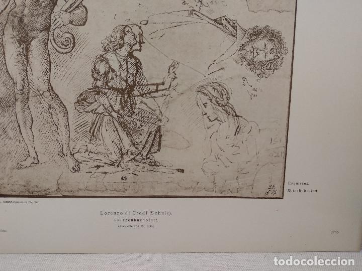 Arte: Bocetos de Lorenzo di Credi, Meister Albertina, plancha nº 1095 - Foto 3 - 237153735