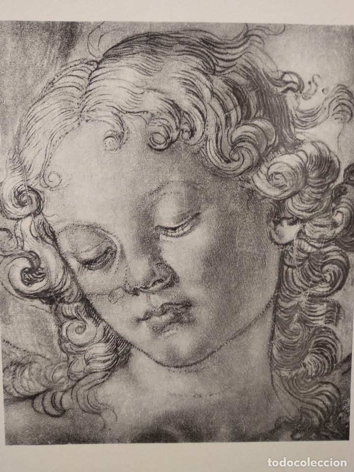 Arte: Estudio de cabeza de angel Andrea del Verrochio, Meister Albertina, plancha nº 134 - Foto 2 - 237155040